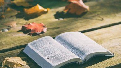 Photo of Versículo da Bíblia sobre família