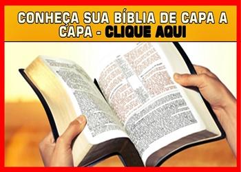 palavra do dia e versículo do dia