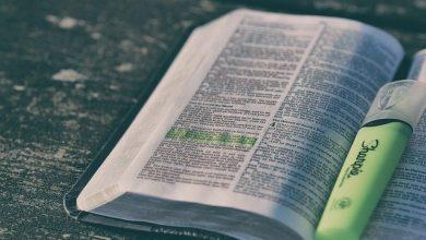 Photo of Quantos versículos tem a Bíblia?