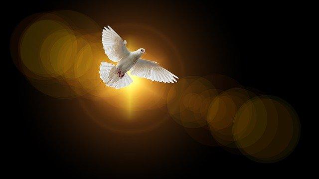 oração do divino espírito santo para alcançar uma graça